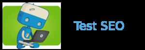 Test seo